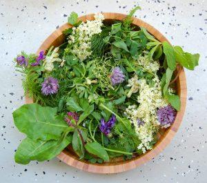 Marzo: i manzoni e le erbe spontanee